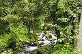 Potok w Dolinie Kościeliskiej 2.jpg