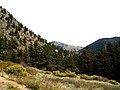 Poudre Canyon, Greyrock trail.jpg