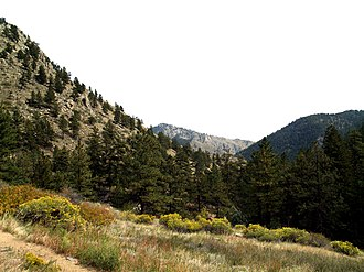 Larimer County, Colorado - Greyrock Mountain trail
