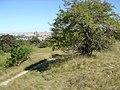 Praha - Děvín - View NNE.jpg