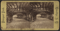 Prospect Park. Playground Arbor, from Robert N. Dennis collection of stereoscopic views.png
