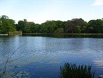 Prospect Park lake.jpeg