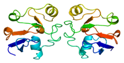 Protein FDX1 PDB 1ayf.png
