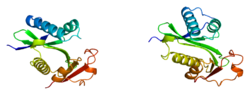 Protein PCAF PDB 1cm0.png