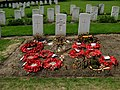 Prowse Point new burials.jpg