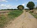 Public bridleway to Poringland - geograph.org.uk - 1451464.jpg