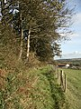 Public footpath at the southern edge of Coed Tonmawr - geograph.org.uk - 993766.jpg