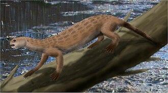 Puijila - Life restoration of Puijila darwini.