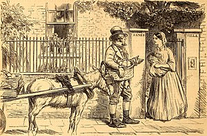 Costermonger - Cartoon featuring a costermonger from Punch, 1841