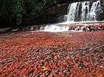 Quebrada del Jaspe-La Gran Sabana-Venezuela08.JPG