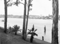Queensland State Archives 216 Looking across the Brisbane River from the City Botanic Gardens September 1936.png