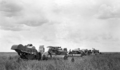 Queensland State Archives 4144 Tractordrawn Headers at work J Fleglers Evanslea November 1934.png