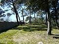 Réserve Naturelle du Lez (2397592648).jpg