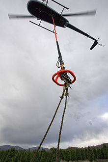 An R44 lifting Christmas trees