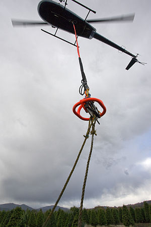 Cargo hook (helicopter) - A Robinson R44 Raven II helicopter using a remote hook to lift Christmas trees. The remote hook is suspended from the belly hook with a long line.
