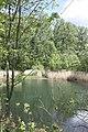 Ragwitz (Bad Dürrenberg), a pond.jpg