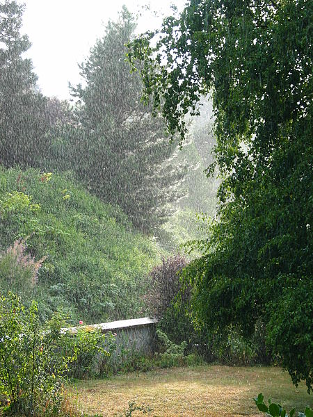 File:Rain falling.JPG
