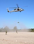 Rappelling training exercise 150306-N-BS486-620.jpg