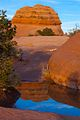 Reflection on the way back from Delicate Arch (8226465030).jpg