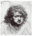 Rembrandt selfportrait1627.jpg