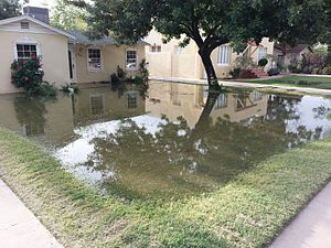 Surface irrigation - Residential flood irrigation in the Southwest, United States of America.