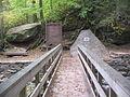 Ricketts Glen State Park Footbridge 3.jpg