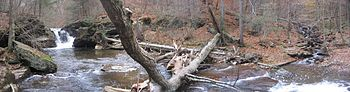 A panoramic view of a rocky creek with a cascade falls to the left, and a large tree which has fallen across the stream in the center. The cracked tree trunk is visible on the opposite bank, and a tributary with cascading falls enters the main stream to the right.