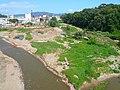 Riu Congost - aiguabarreig amb el Mogent P1180271.JPG
