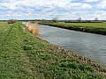 River Brue near Cow Bridge, south of Glastonbury - geograph.org.uk - 730916.jpg