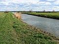 River Brue near Cow Bridge, south of Glastonbury - geograph.org.uk - 730916.jpg