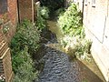 River Darenth in Chipstead - geograph.org.uk - 1450269.jpg