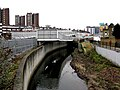River Ravensbourne and Elverson Road DLR station - geograph.org.uk - 1672171.jpg