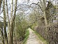 Riverbank walk - geograph.org.uk - 406426.jpg