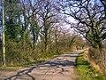 Road - panoramio (60).jpg