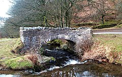 Stone bridge over fast flowing water surrounded by vegetation