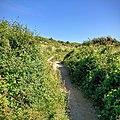 Rock-cornwall-england-tobefree-20150715-182444.jpg