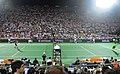 Roger Federer and Juan Martin del Potro (8367912372).jpg