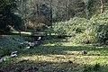 Rombergpark-100331-11475-Bruecke.jpg