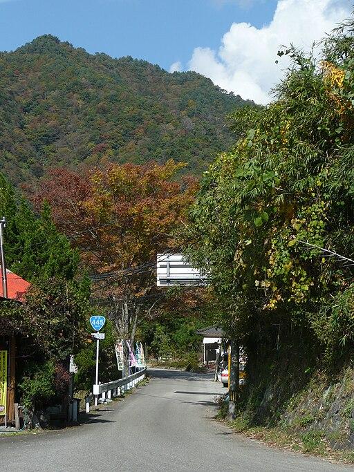 Route445 Gokanosho Shiibaru 01