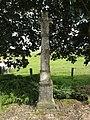 Rozelieures (M-et-M) croix de chemin B (2).jpg