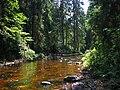 Rudņa river.jpg
