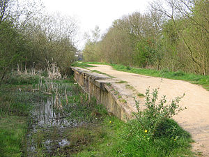 The remains of Rugby Central Station on the former Great Central Railway, one of many stations and lines that were closed under the Beeching Axe