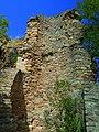 Ruinen der Burg Rheingrafenstein - panoramio.jpg