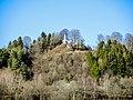 Ruines de l'ancien château de Montrond et Vierge du château.jpg