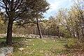 Ruins - panoramio (39).jpg