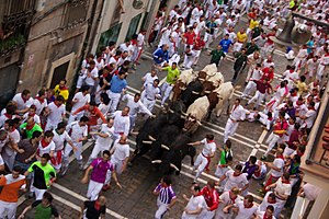 Running of the Bulls - Runners surround the bulls on Estafeta Street