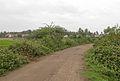 Rural road to Nemam Village.jpg