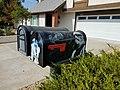 SW Mail Box.jpg