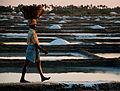 Salt field worker.jpg