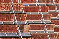 Sanlúcar, planta solar 10.jpg